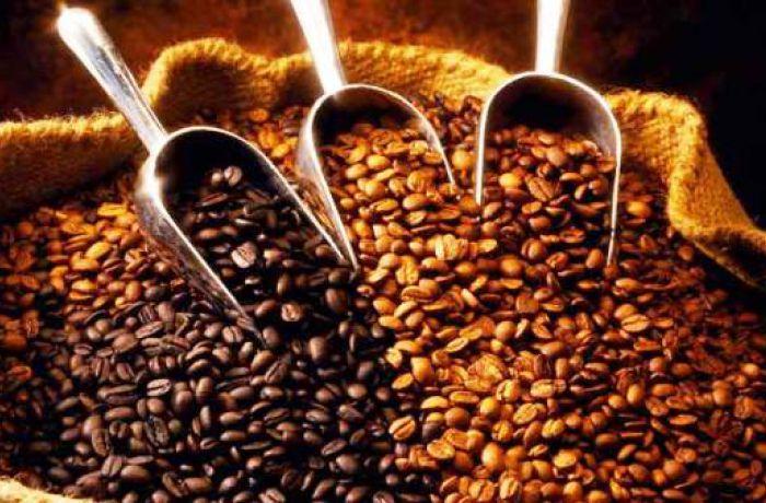 Албания увеличила импорт кофе в полтора раза
